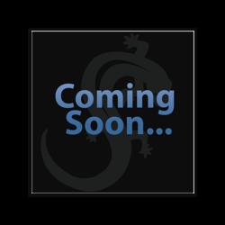 UV POLYMER FLEXIBLE BARBELL WITH WHITE RASTA BALL