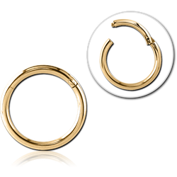 GOLD PVD 18K COATED SURGICAL STEEL GRADE 316L HINGED SEGMENT RING