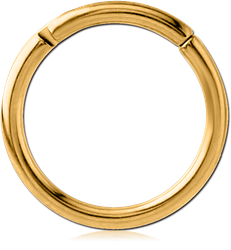 GOLD PVD COATED TITANIUM ALLOY HINGED SEGMENT RING