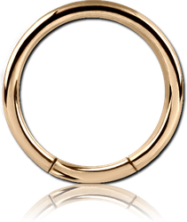 ZIRCON GOLD PVD COATED SURGICAL STEEL GRADE 316L SMOOTH SEGMENT RING